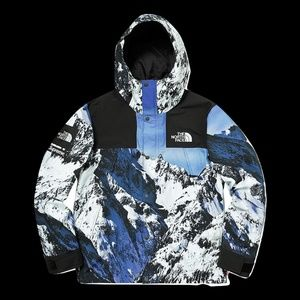 Supreme The North Face TNF Mointain Parka - Used